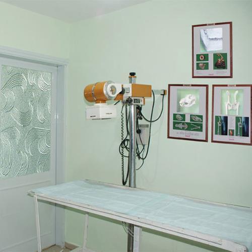 Röntgen Bölümü
